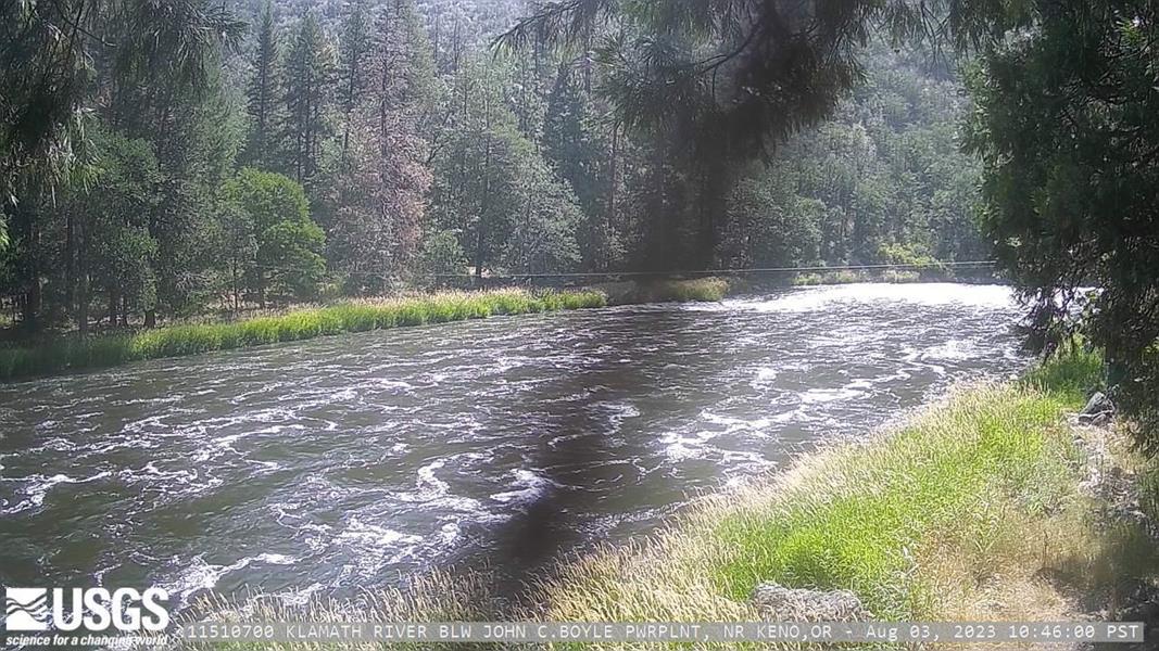 Recent Image of KLAMATH RIVER BLW JOHN C.BOYLE PWRPLNT, NR KENO,OR